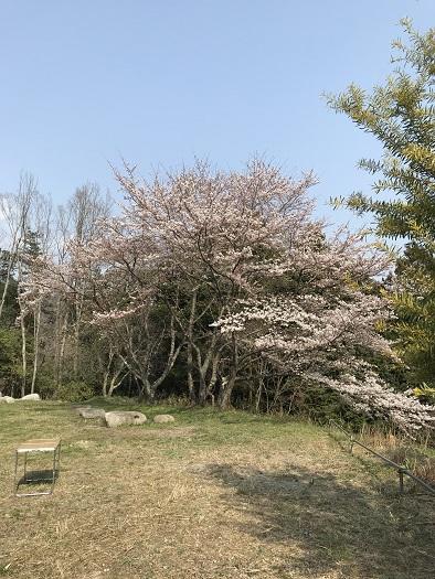 http://www.kanedakensetsu.co.jp/blog/IMG_0255-1.jpg